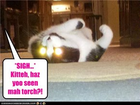 *SIGH...* Kitteh, haz yoo seen mah torch?!