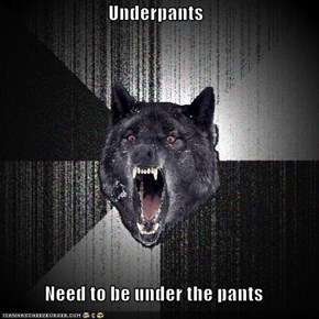 Underpants  Need to be under the pants
