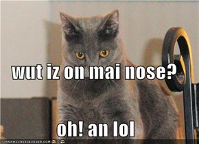 wut iz on mai nose? oh! an lol