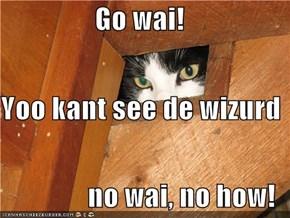 Go wai! Yoo kant see de wizurd no wai, no how!