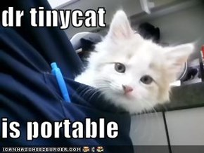 dr tinycat   is portable