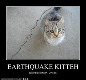 EARTHQUAKE KITTEH