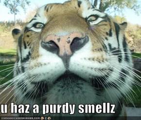 u haz a purdy smellz