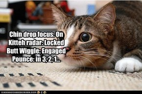 Chin drop focus: On Kitteh radar: Locked Butt Wiggle: Engaged Pounce: in 3, 2, 1...