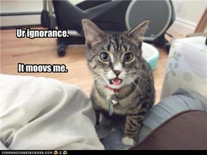 Ur ignorance.   It moovs me.