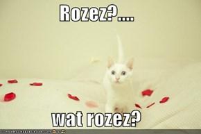 Rozez?....  wat rozez?