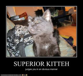 SUPERIOR KITTEH