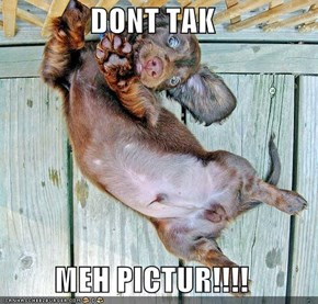 DONT TAK  MEH PICTUR!!!!
