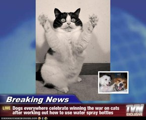 Breaking News - Dogs everywhere celebrate winning the war on cats after working out how to use water spray bottles