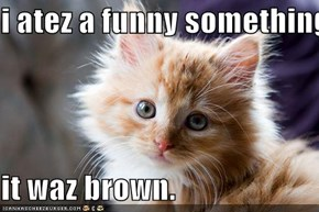 i atez a funny something.  it waz brown.