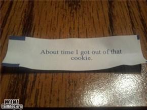 Self-Aware Fortune WIN