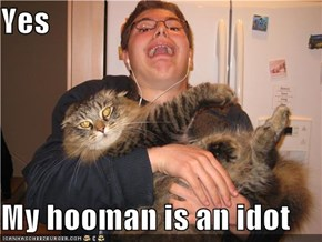 Yes   My hooman is an idot