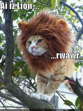 Ai iz Lion.... ...rwawr