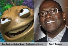 Blow fish from Finding Nemo Totally Looks Like Randy Jackson