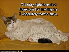 I'll stay right here but  thank you for inviting me. I absolutely            snow.