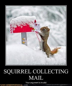 SQUIRREL COLLECTING MAIL