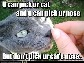 U can pick ur cat            and u can pick ur nose     But don't pick ur cat's nose..