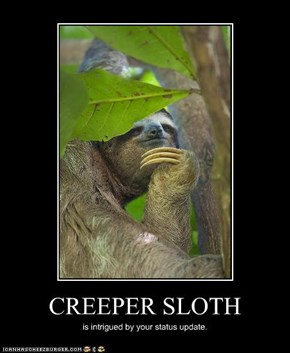 CREEPER SLOTH