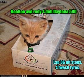 BooBoo awl redy 4 deh Daytona 500