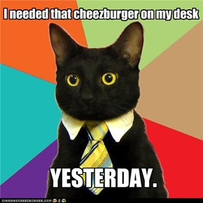 Business Cat needs your TPS reports and....