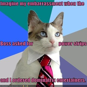 Imagine my embarrassment when the Boss asked for                         power strips and I ordered dominatrix entertainers.