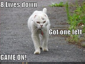 8 Lives down Got one left GAME ON!
