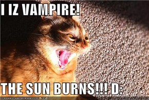 I IZ VAMPIRE!  THE SUN BURNS!!! D: