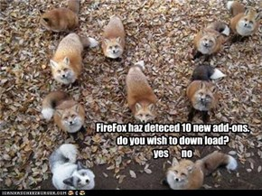 FireFox add-ons
