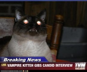 Breaking News - VAMPIRE KITTEH GIBS CANDID INTERVIEW