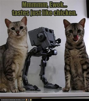 Mmmmm, Ewok... tastes just like chicken.