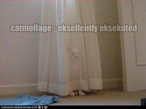 catmoflage~ eksellently eksekuted