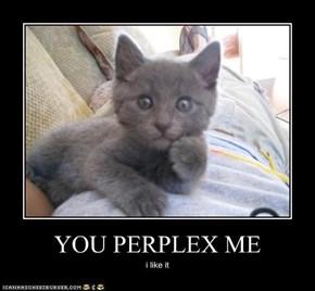 YOU PERPLEX ME