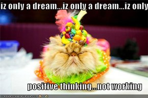 iz only a dream...iz only a dream...iz only a  positive thinking...not working