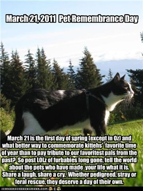 March 21, 2011  Pet Remembrance Day
