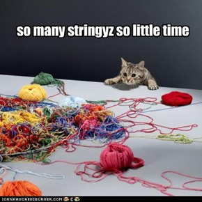 so many stringyz