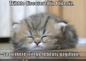 Tribble discovered in Phoenix.  Soon there will be lebenty gagillion.