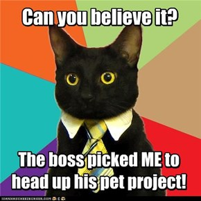 Business Cat: Good news