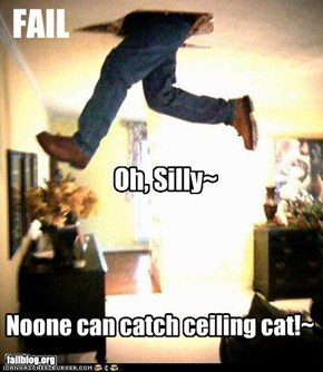 Can't Catch Ceiling Cat