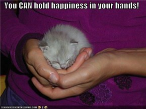 You CAN hold happiness in your hands!