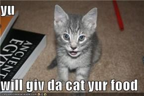 yu  will giv da cat yur food