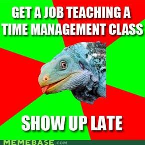 Irony Iguana: Time Management