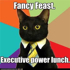 Business Kitty: It was between that or sushi.