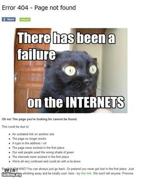 LOL cat WIN!!