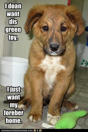 I doan want dis green toy.