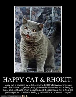 HAPPY CAT & RHOKIT!