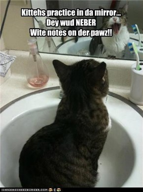 Kittehs practice in da mirror... Dey wud NEBER Wite notes on der pawz!!