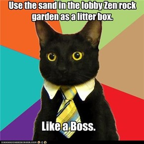 Use the sand in the lobby Zen rock garden as a litter box.
