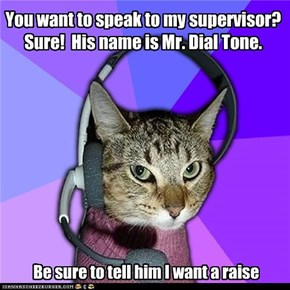 You want to speak to my supervisor? Sure!  His name is Mr. Dial Tone.