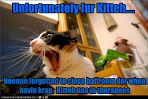 Unfortunately fur Kitteh....