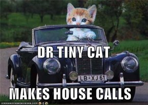 DR TINY CAT MAKES HOUSE CALLS